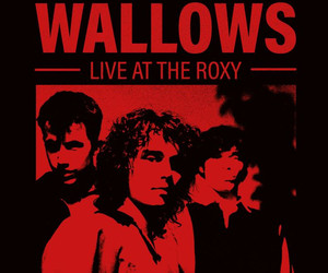 Neuer Song und Virtual Live Tour von Wallows